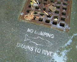 Storm Water Pollution Prevention Plan (SWPPP) Webinar NES Training